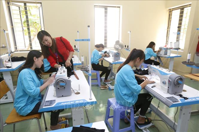 Ly Tu Trong Vocational College (Ha Tinh) provides vocational training for 950 students